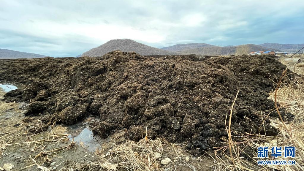 3月28日,在黑龙江省五常市沙河子镇福太村被盗挖的黑土在田间堆积。新华社记者 杨思琪 摄