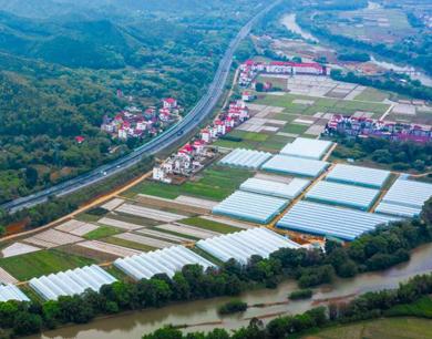 大余县:产业兴 乡村美