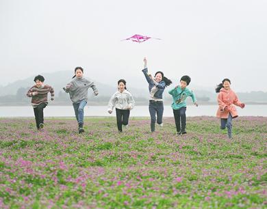 春意浓!樟树市梦湖湖畔300多亩紫云英盛放