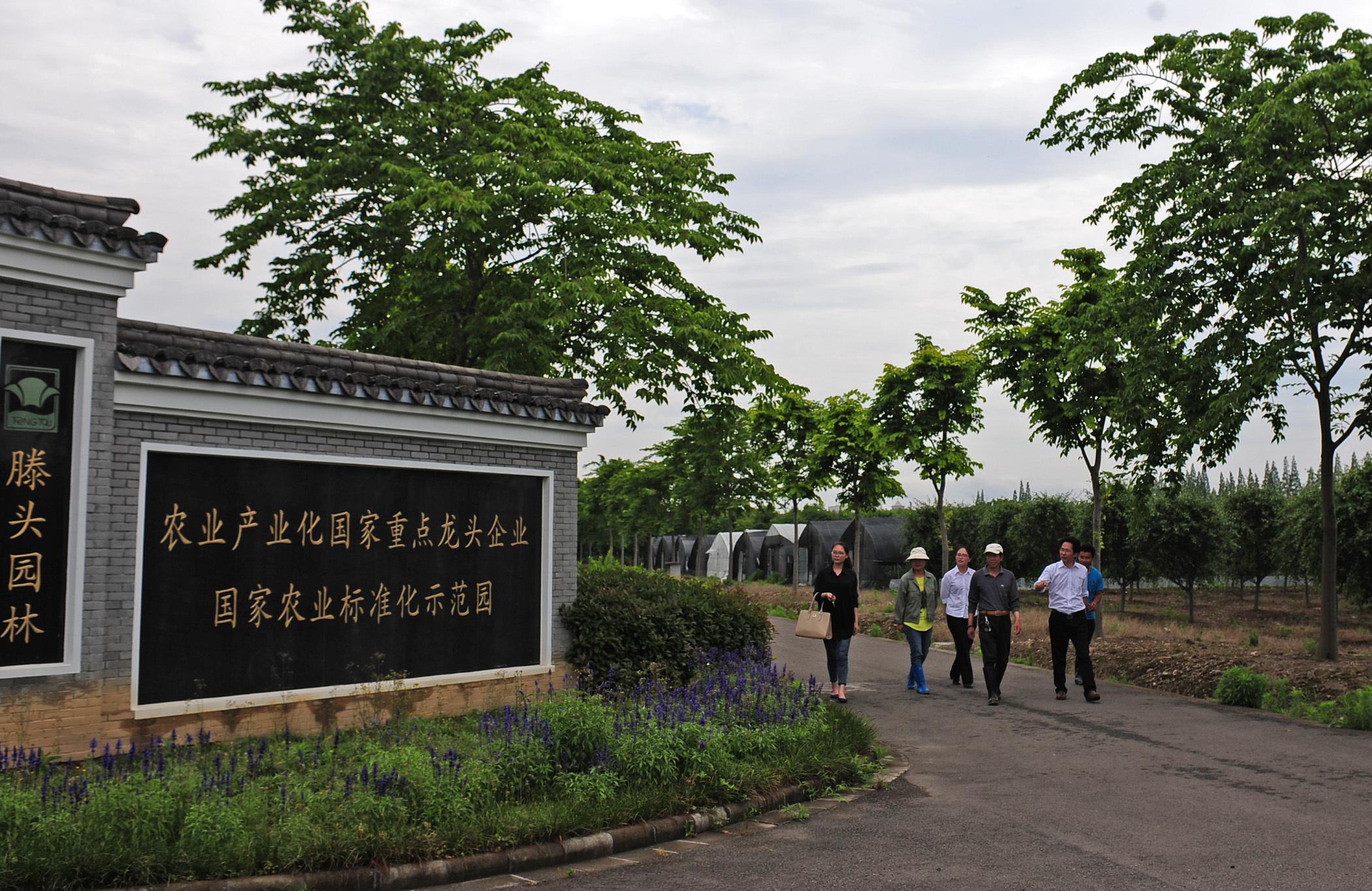 图为农行客户经理走访奉化滕头村园林龙头10bet十博官网登录平台。