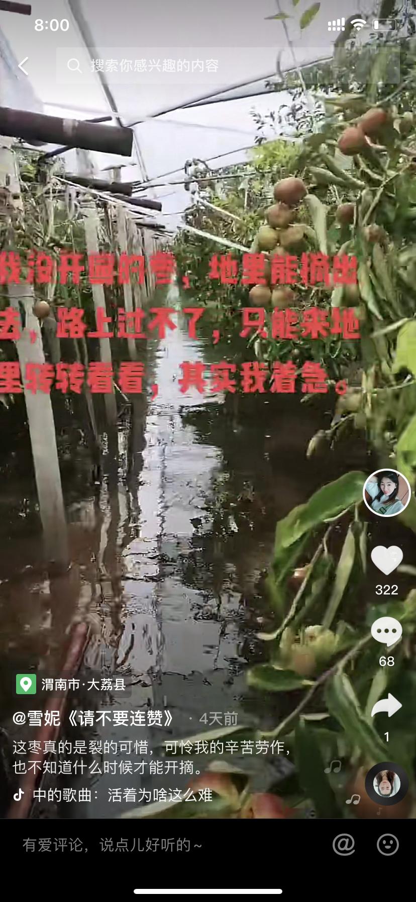 陕西大荔县近50万亩农田受灾,有种枣户损失近百万元,农民:3年辛苦白费了