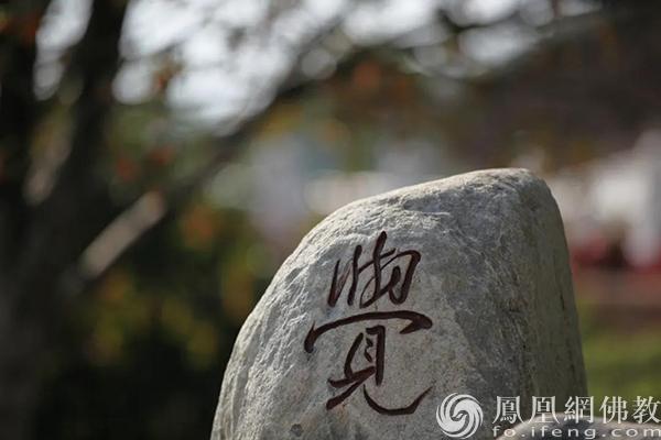 图片来源:凤凰网佛教 摄影:耀宏
