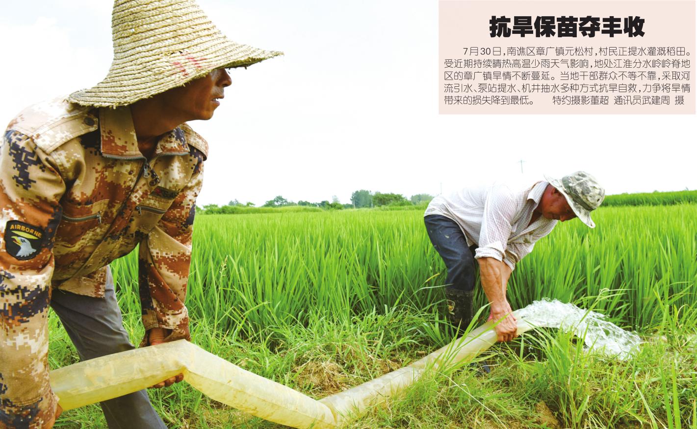 滁州:抗旱保苗夺丰收