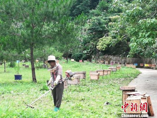 广东建设184个现代农业产业园带动123万农民就业