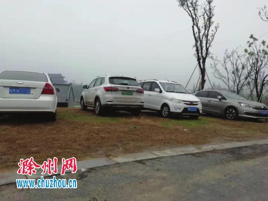 """机动车""""夜宿""""滁州北湖公园 绿地惨遭碾压"""