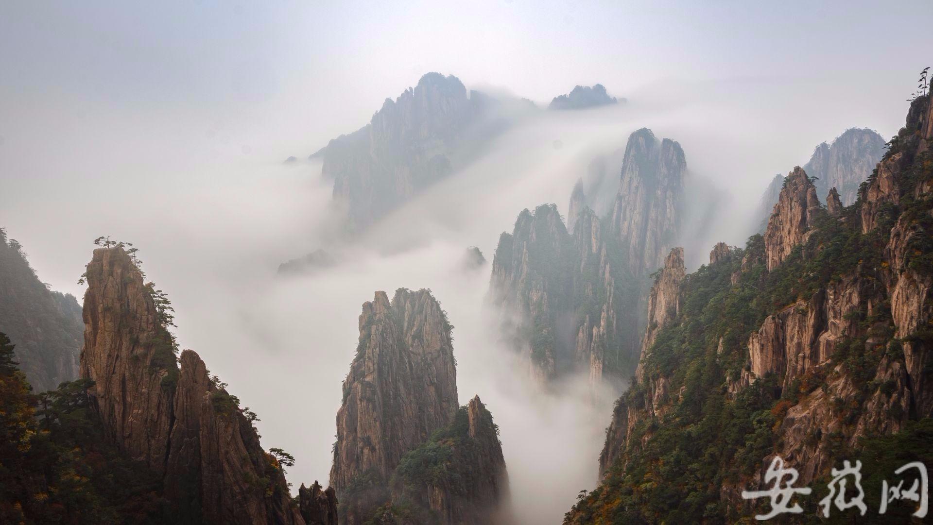 国庆黄金周渐入尾声 黄山旅游热度不减 作者: 来源:安徽网