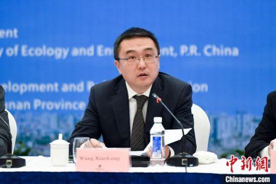 中国外交部国际经济司司长王小龙发言。 杨华峰摄