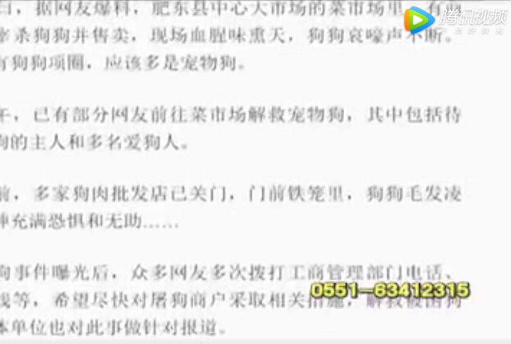"""合肥:寵物狗被虐殺引關注 狗肉監管成為""""無人區"""""""