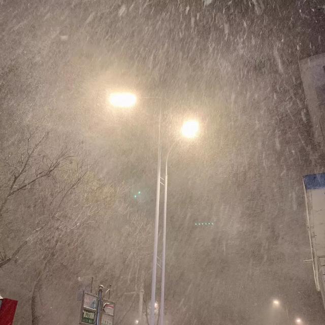 """烟台一夜大雪!这才是""""雪窝子""""应该有的容貌"""