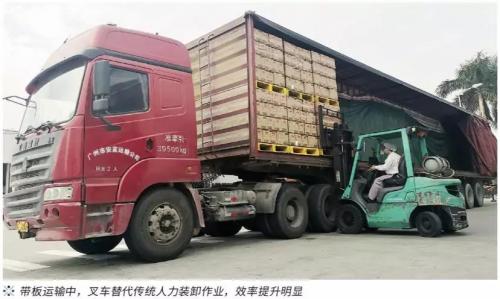 路凯LOSCAM:百年李锦记的带板运输经验分享