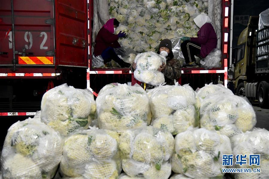 (聚焦疫情防控)(1)山东寿光:积极保障蔬菜供应