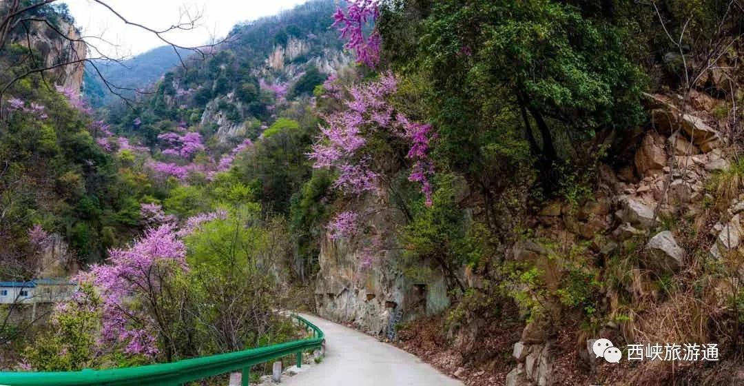 猜你一定想念西峡老君洞的美丽风景了 景区复工的消息来了