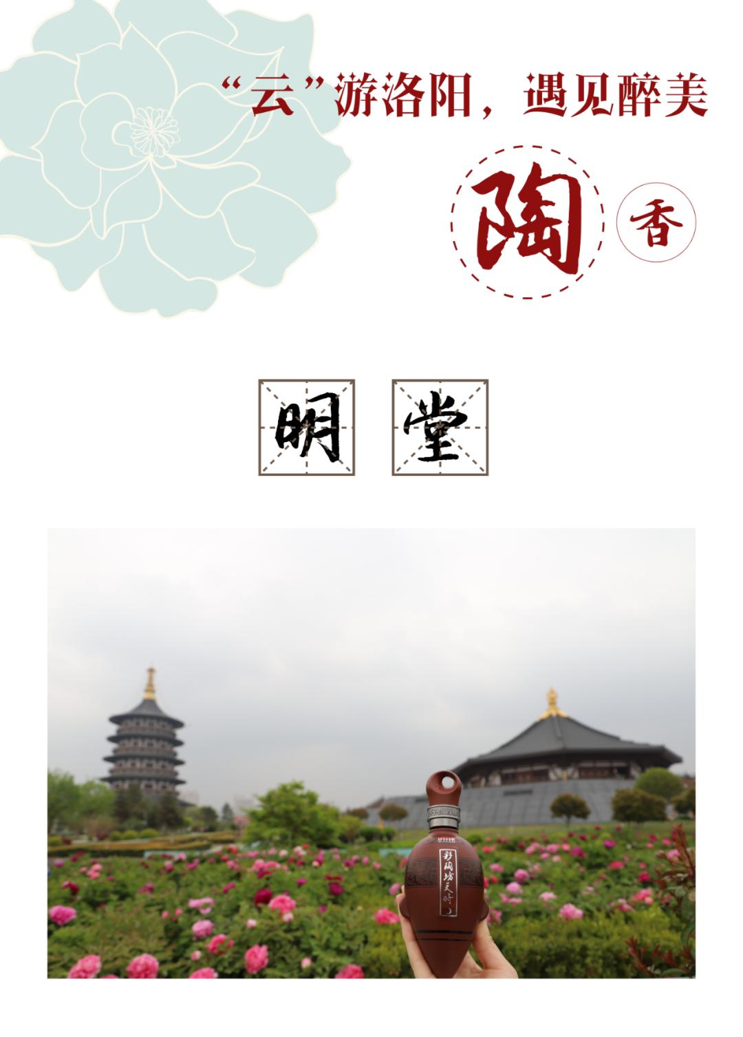 """春风十里赴一场花期:""""云""""游洛阳,遇见醉美陶香!"""