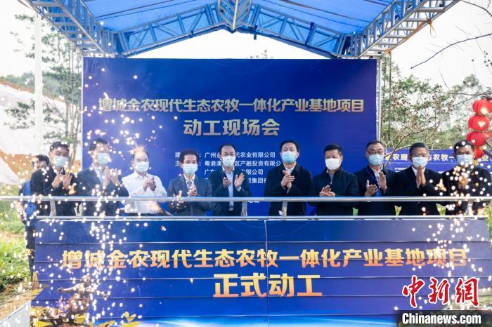 广州增城动工建设年出栏量30万头生猪生态养殖基地
