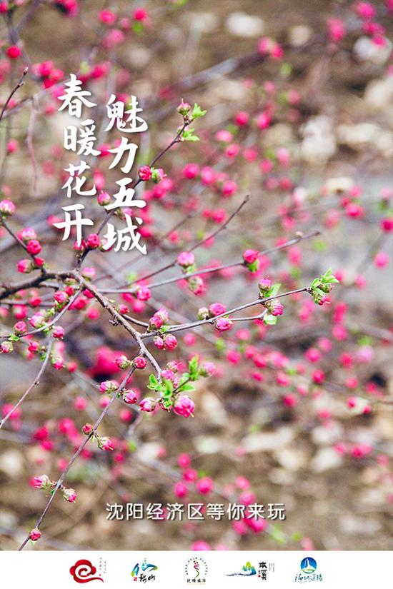春暖花开 魅力五城 沈阳经济区等你来玩——邀你体验别样春日温柔