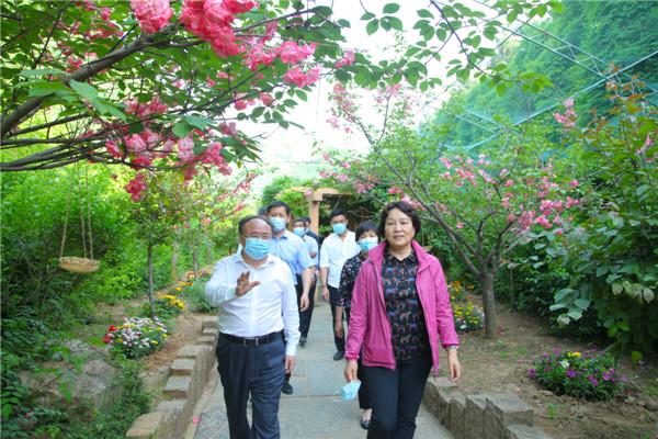 山东省文化和旅游厅赴萤火虫水洞