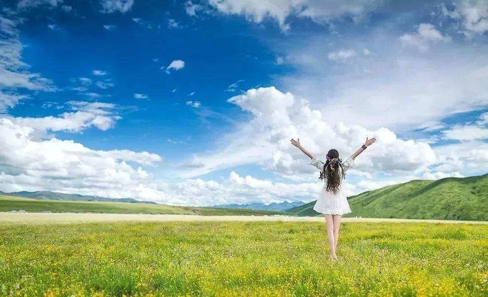 七月去趟甘南,你的夏天才叫完美