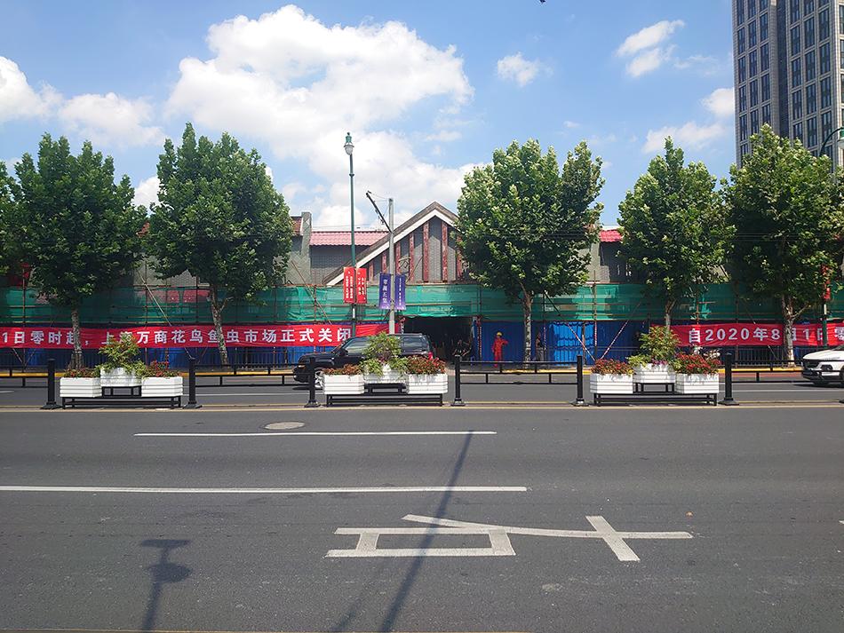 万商花鸟市场与8月1日零时正式关闭。 本文图片均为澎湃新闻记者李菁实习生沈惜羽摄