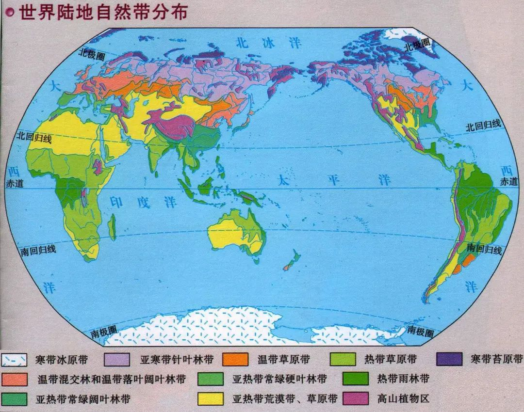 世界植被带分布图