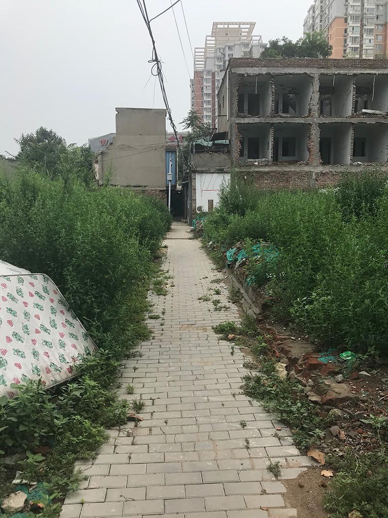榴乡路东侧平房区域垃圾、剩余楼宇1.jpg