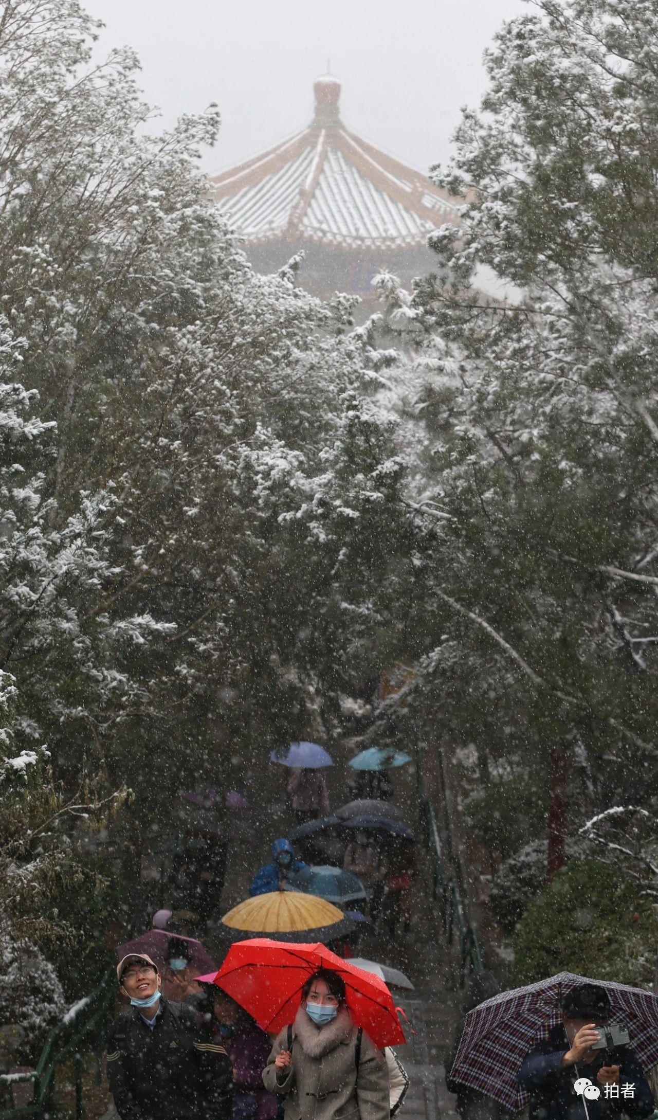 北京初雪最全图集来了!一文看遍城里城外 最新热点 第21张