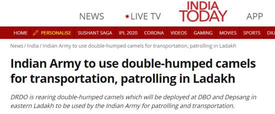 """《今日印度》:印军将使用双峰驼在""""拉达克地区""""进行运输巡逻"""
