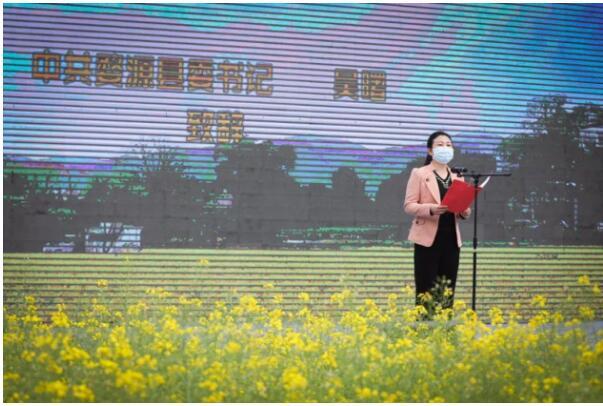 满屏金黄 惊艳春天 第二届婺源油菜花旅游文化节盛装开幕!