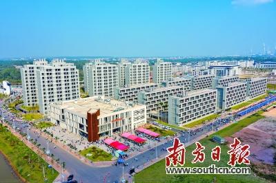 广东石油化工学院校园景色。