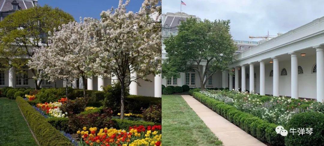 【人与曽200部视频基础教程】_最惊艳对比照,特朗普一家这样改造了白宫
