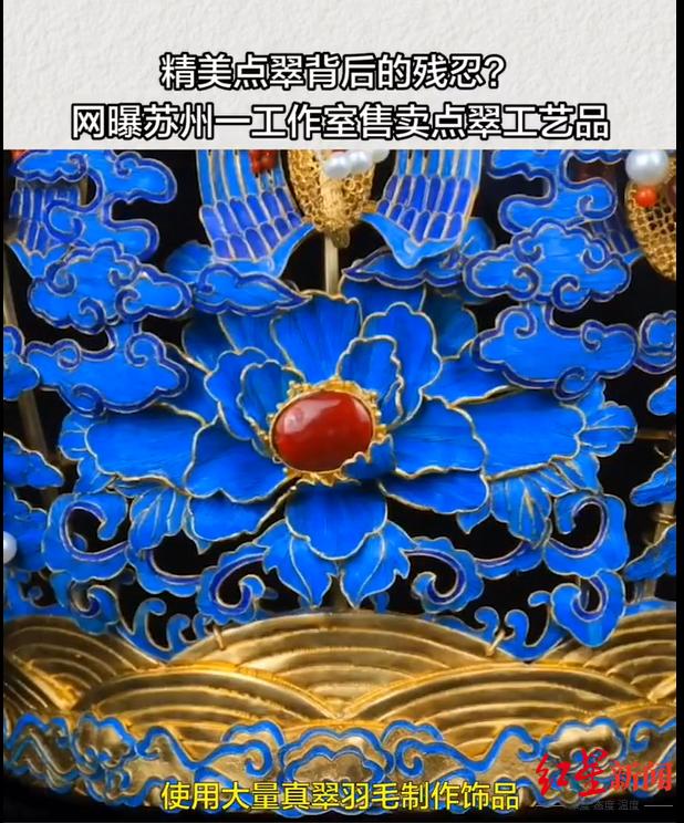 【迪士尼国际网址dsn595com】_非遗技艺与翠鸟保护背后之争:苏州一点翠工艺坊使用翠鸟羽毛引争议