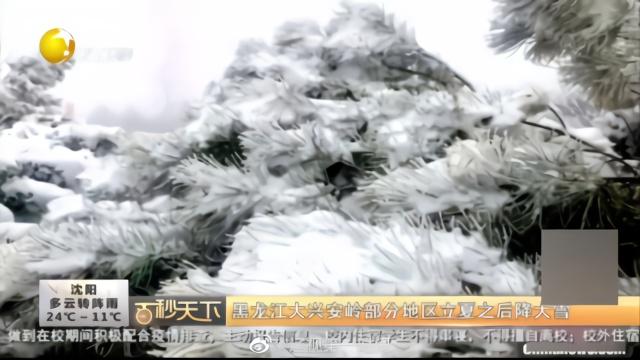 #黑龙江#大兴安岭部分地区立夏之后降大雪