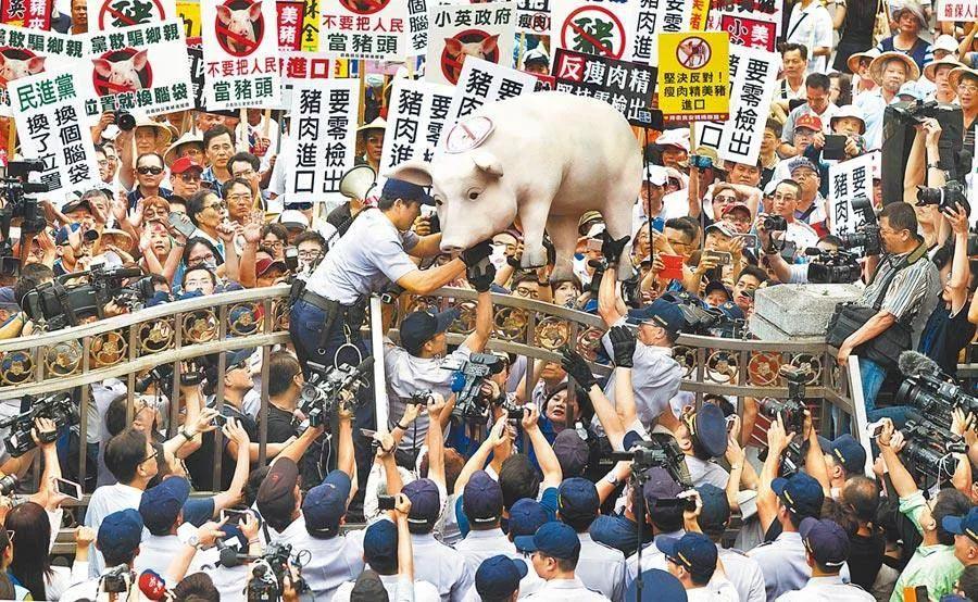 【莱芜亚洲天堂】_放宽美猪美牛进口,民进党高官忙甩锅,岛内各界怒了