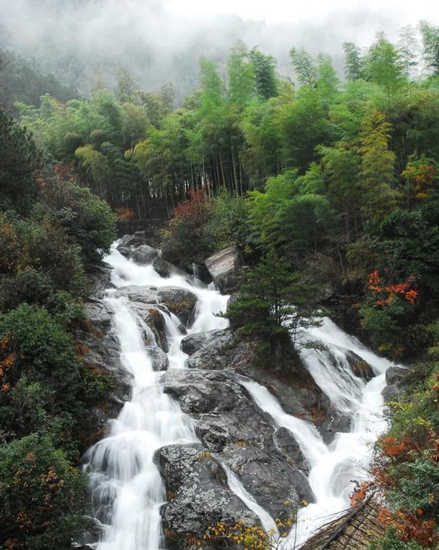 趁着五一未到!来杭州这些景区景点免费畅玩吧 行业资讯 第14张