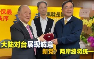"""新党:两岸终将统一,""""一国两制台湾方案""""是大陆展现的诚意"""
