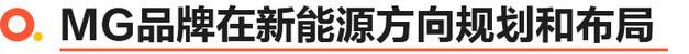 选择MG领航PHEV/精明人开精致车 名爵专访