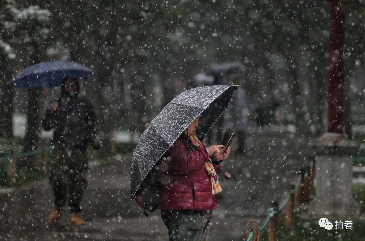 北京初雪最全图集来了!一文看遍城里城外 最新热点 第20张