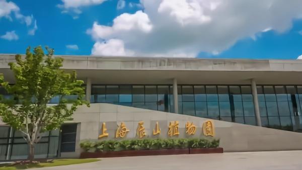 """上海辰山植物园十周岁啦!""""云赏花云享乐""""带你走进美丽园区"""