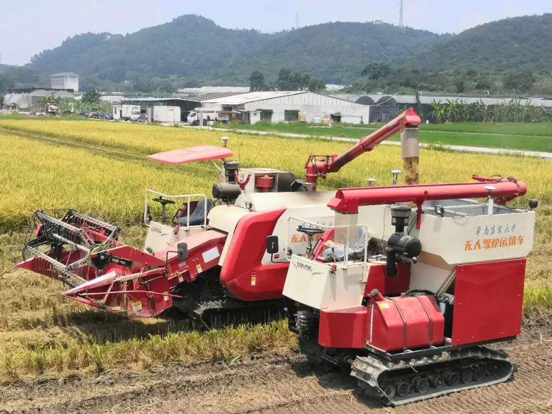 """""""粮仓满了,请来收粮食 全程机械化耕作"""