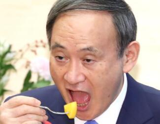 菅义伟品尝柿子 图源:日媒