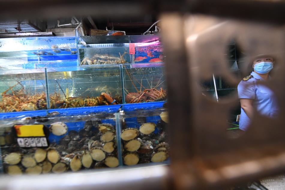6月16日,三源里菜市场,执法人员对水产摊位逐一检查,水产来源清晰,未发现新发地的货源。人民视觉 图