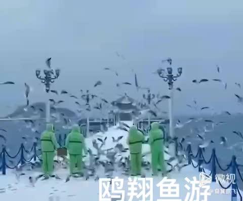 雪景栈桥欧翔鱼跃