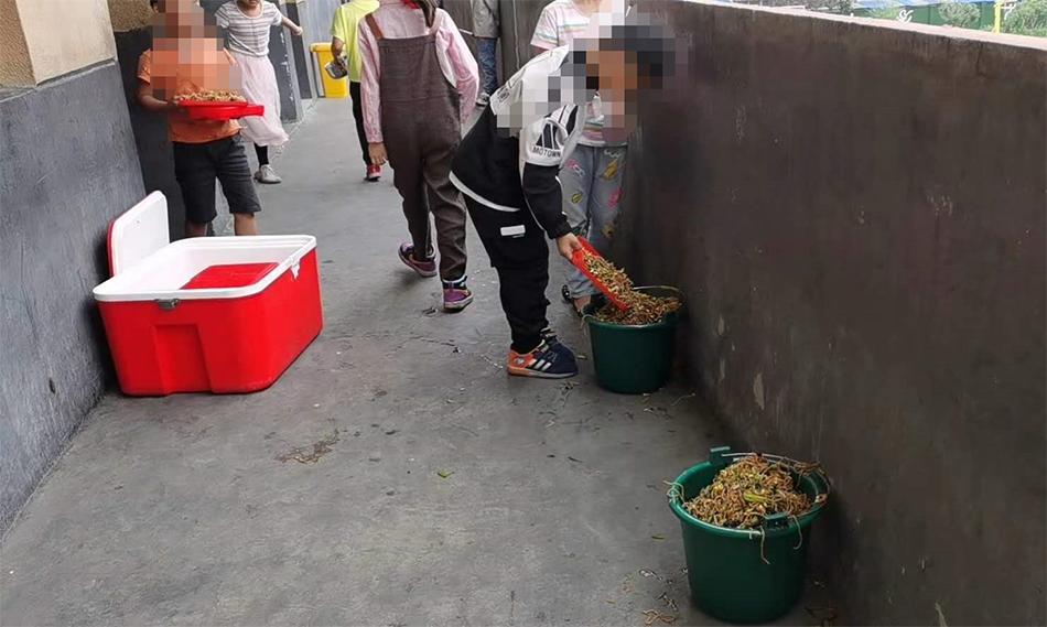 """【程安东】_安徽一小学学生将营养餐倒掉""""溢出垃圾桶"""",校方回应"""