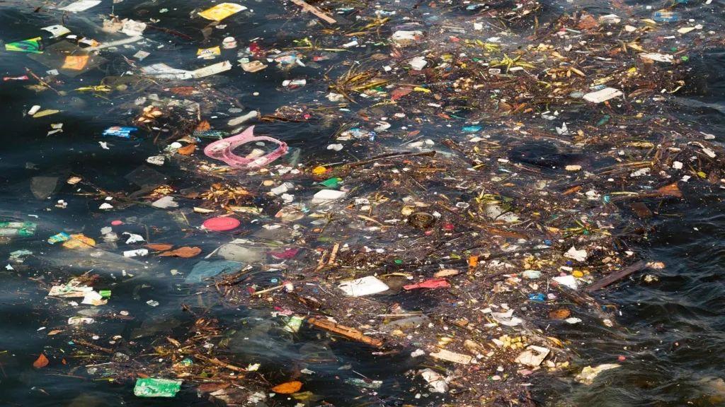 消失的海洋塑料:它们都去哪儿了?