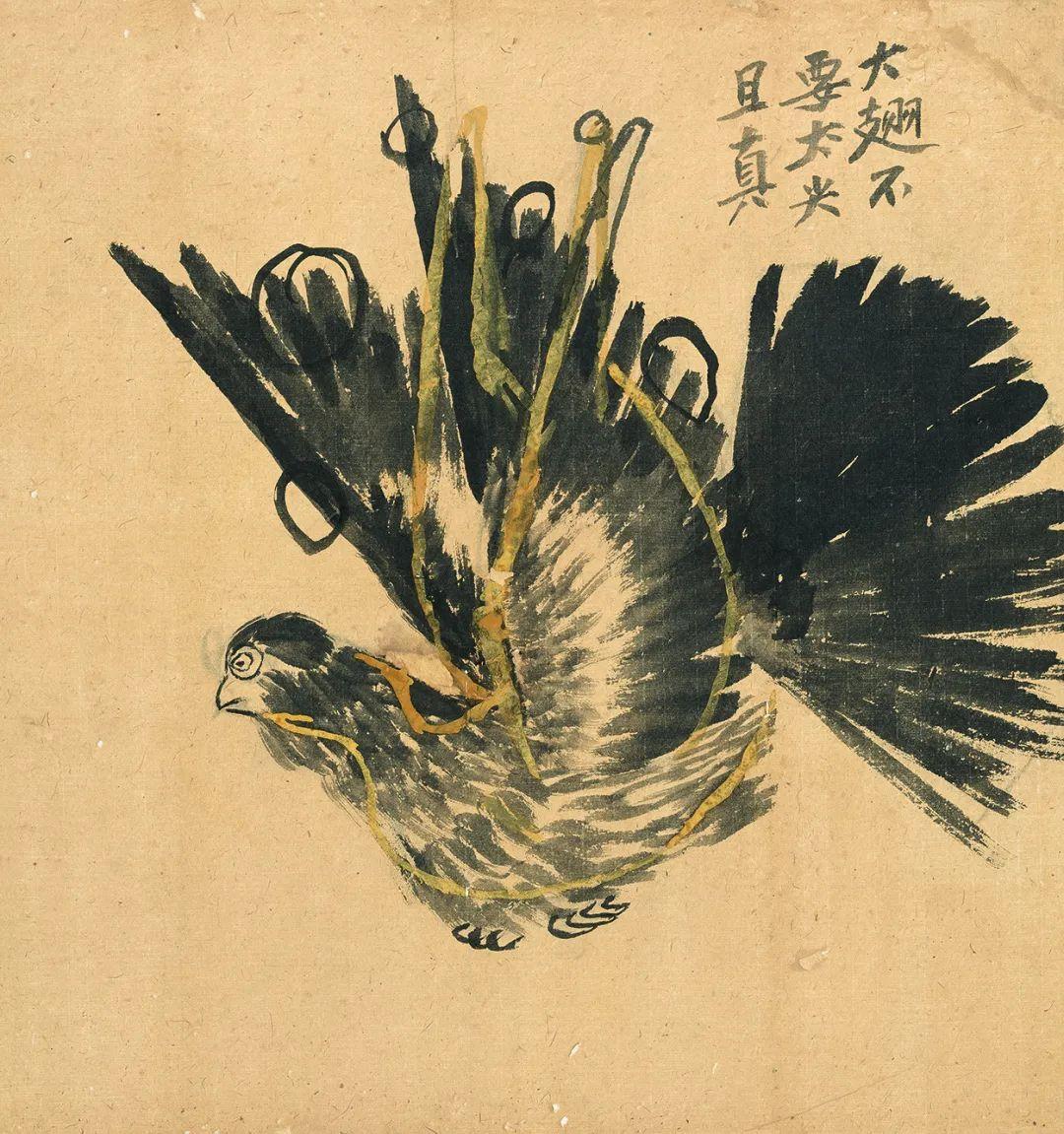 翔鸽稿 齐白石 50×47cm 北京画院藏