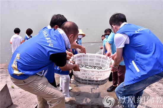 众人合力搬运鱼苗(图片来源:凤凰网佛教 摄影:季·©)