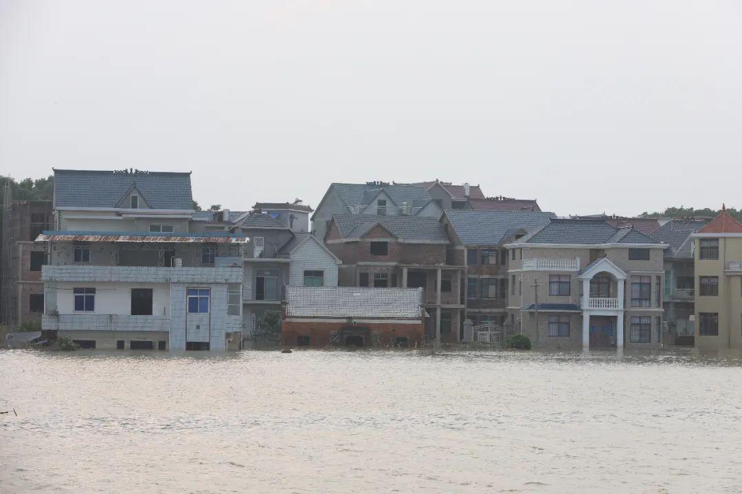 放眼望去,农田、民房都淹没在洪水中。