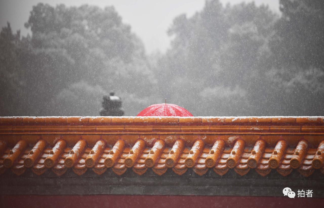 北京初雪最全图集来了!一文看遍城里城外 最新热点 第12张