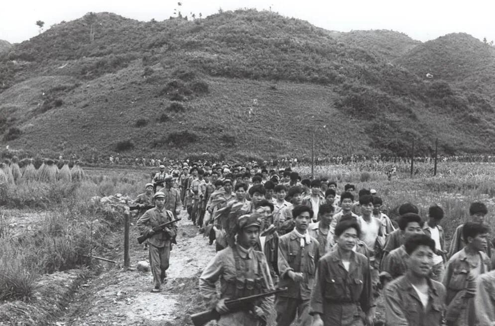 上图_ 金城战役志愿军俘虏的敌军