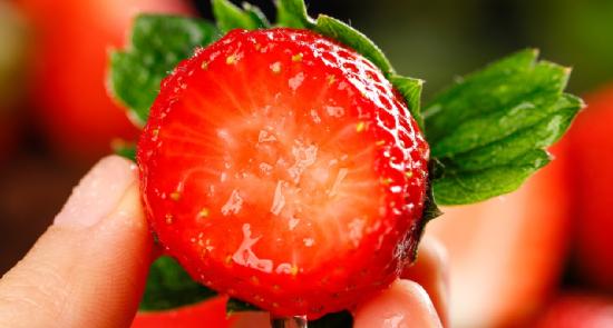 人工智能的浪潮,终于席卷到了草莓