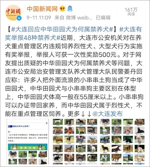 【排名优化软件】_大连回应中华田园犬为何属禁养犬 合肥深圳为何能养?